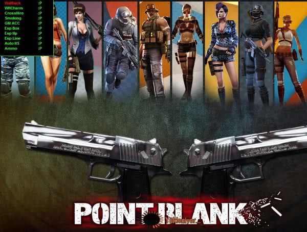 Point Blank Hilesi Vip 02.10.2012 Wallhack No Smoke Auto GM HP 120 Damage up indir