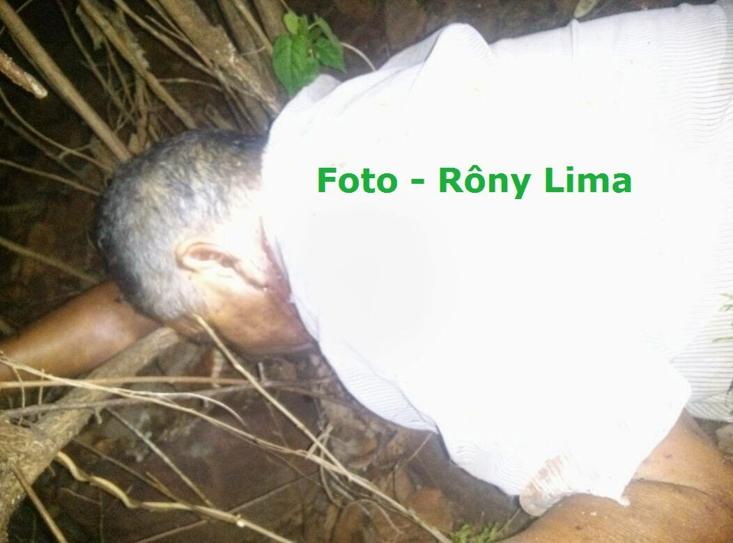 Agricultor morre vítima de ataque de abelhas, à zona rural de Triunfo PE