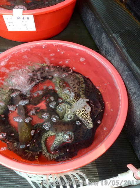 gulangyu restaurant eels