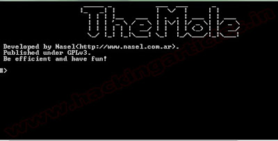 website hacking sql injection