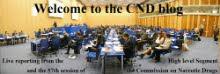 ¡Visita también el CNDBlog en inglés!