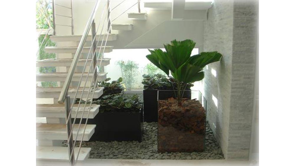 fotos jardim quadrado:de plantas de vidro com cascas, vasos de plantas escuros, quadrados