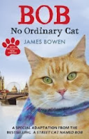 Bob No Ordinary Cat review