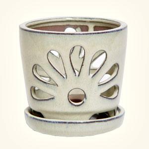 Vasi e tipologia abbinamento vaso pianta hobby bonsai for Vasi bonsai plastica