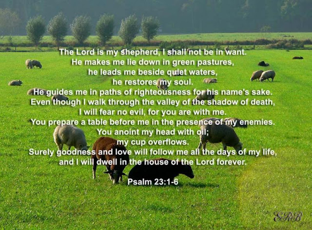 Psalm 23 1 6 NIV http://nyupperroom.blogspot.com/2013/01/psalm-231-6.html