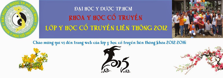 YHCT LT 2012-2016