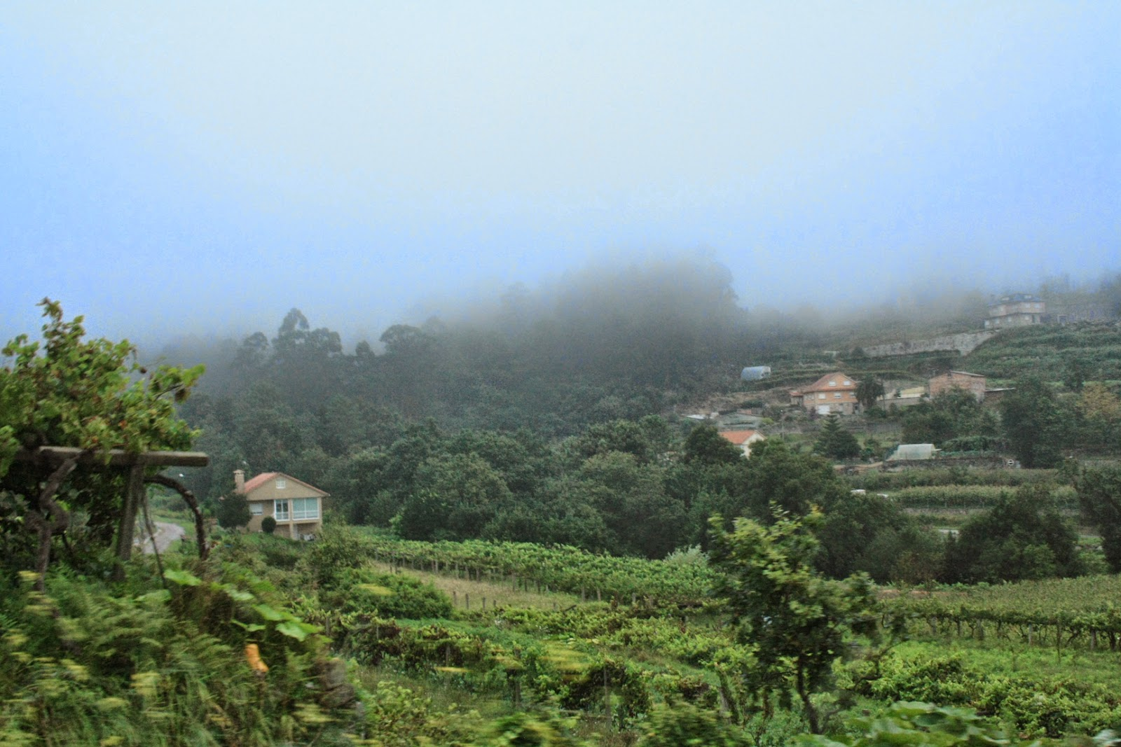álbum de fotos de Figueiró y del monte