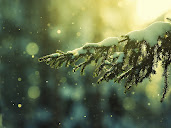 #18 Christmast Wallpaper