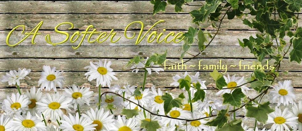 A Softer Voice