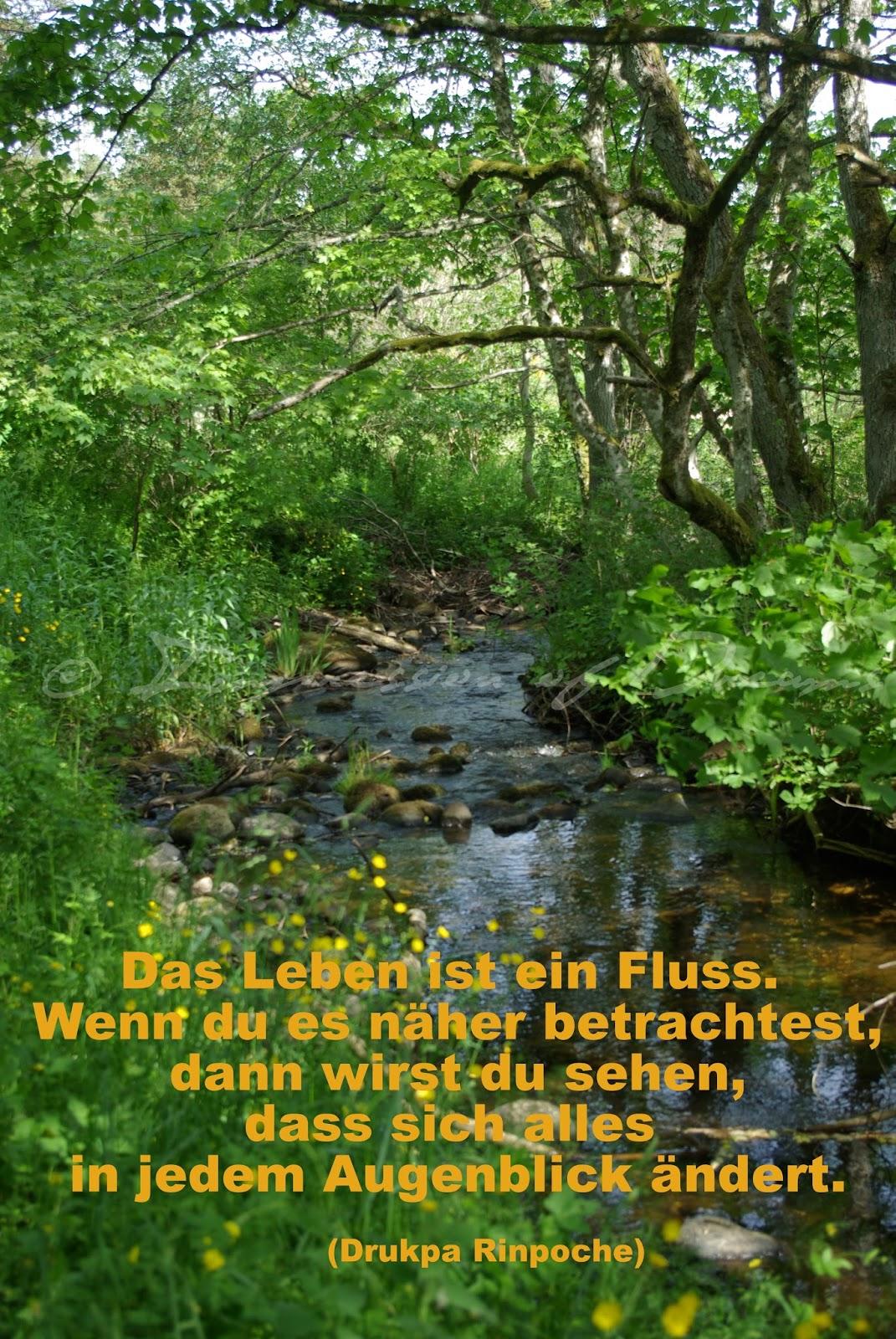 Das Leben ist ein Fluss. Wenn du es näher betrachtest, dann wirst du sehen, dass sich alles in jedem Augenblick ändert.