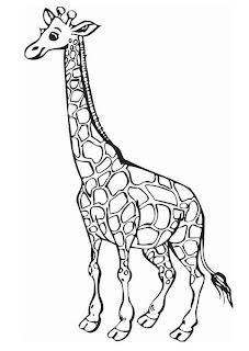 Dibujos para imprimir y colorear: Jirafa para colorear