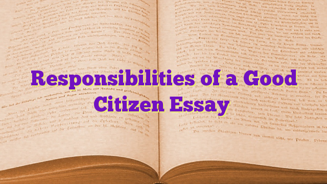 essay about good citizenship