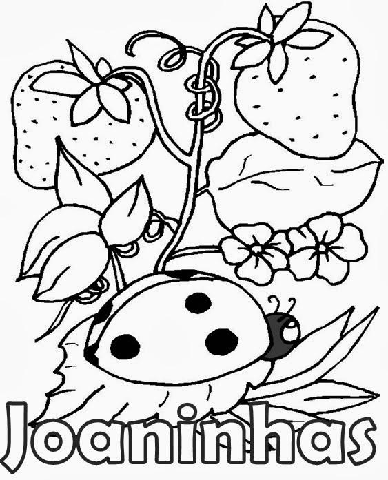Desenho Joaninha ~ Joaninha para colorir Colorir Desenhos Para Colorir