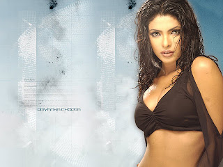 Hot Actress Priyanka Chopra Photo picture collection 2012