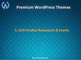 33 premium wordpress