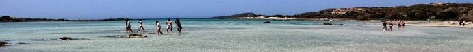 Ελαφονήσι ο παράδεισος είναι στην Κρήτη