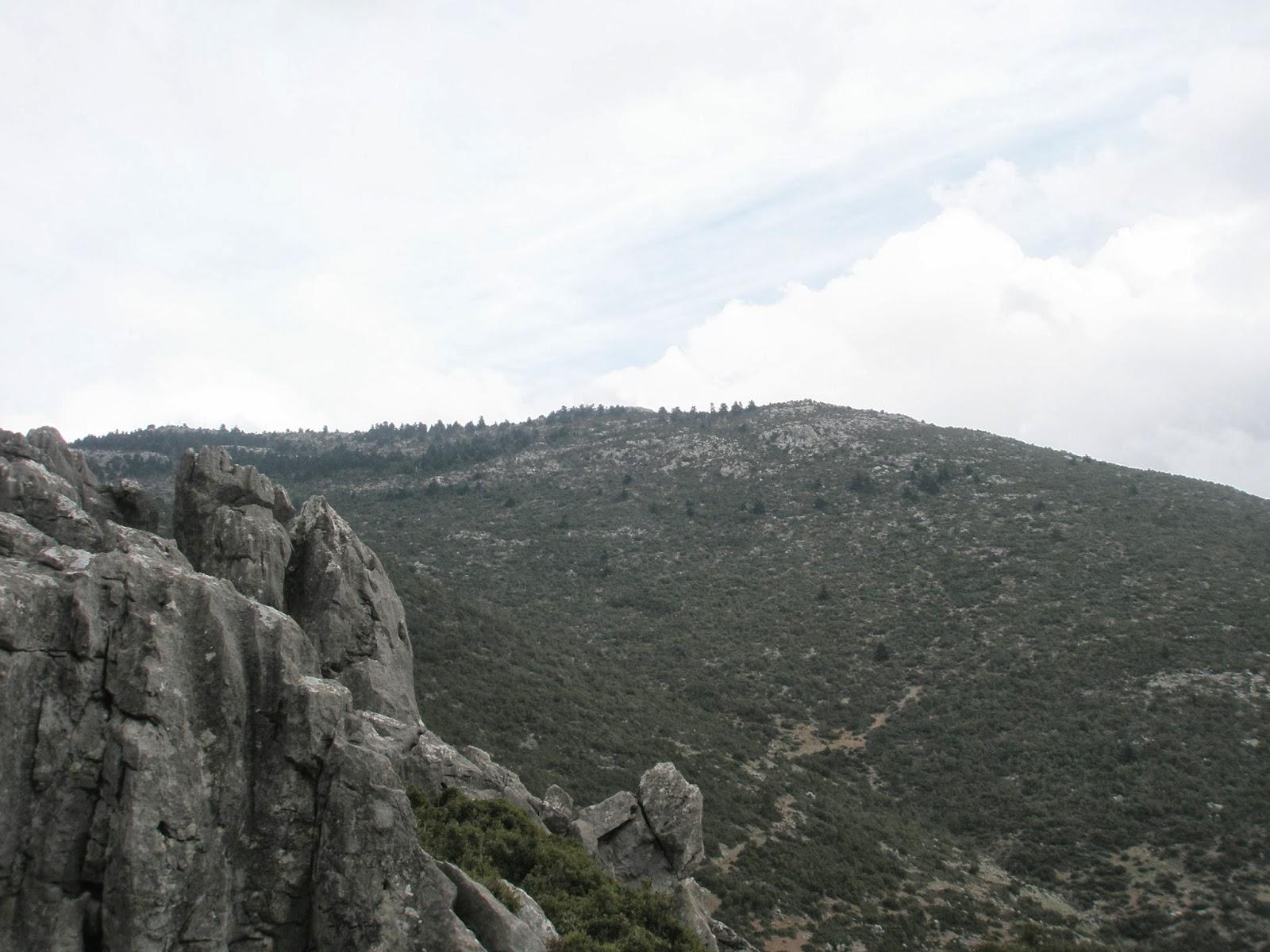 ΜΕΛΙΔΟΝΙ 1356 m.