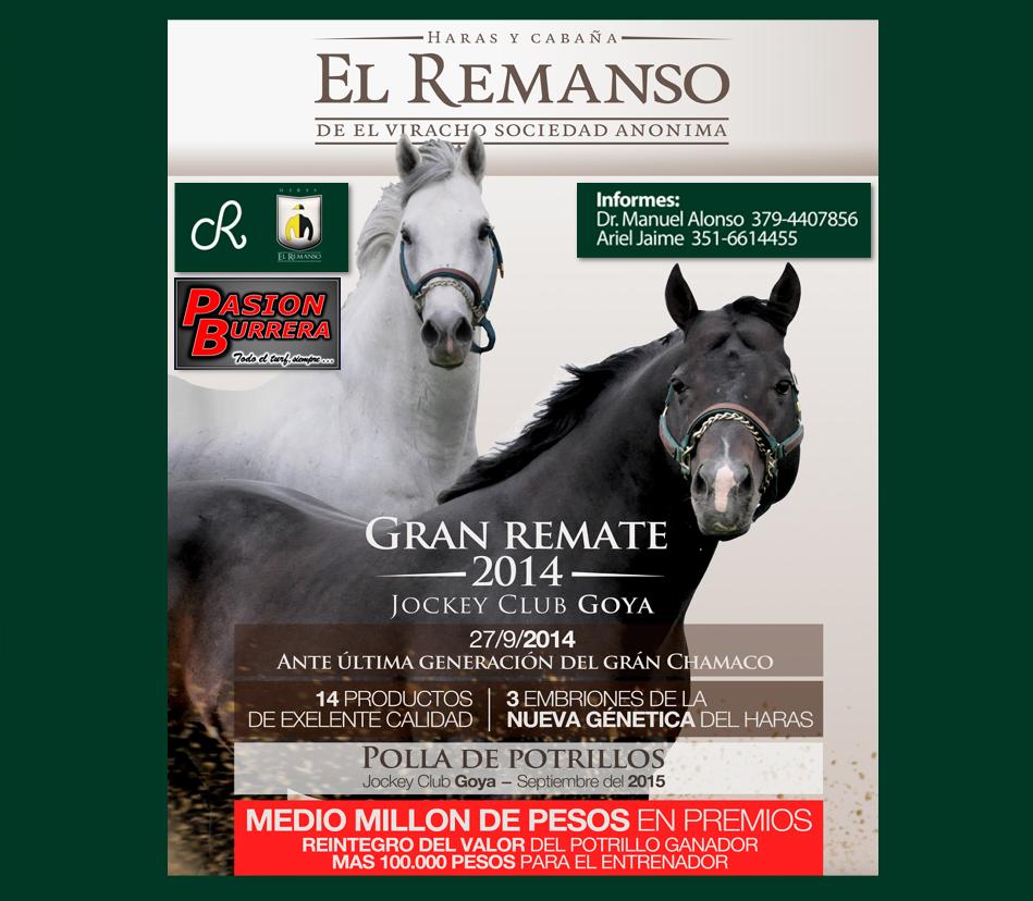 REMATE EL REMANSO 2014