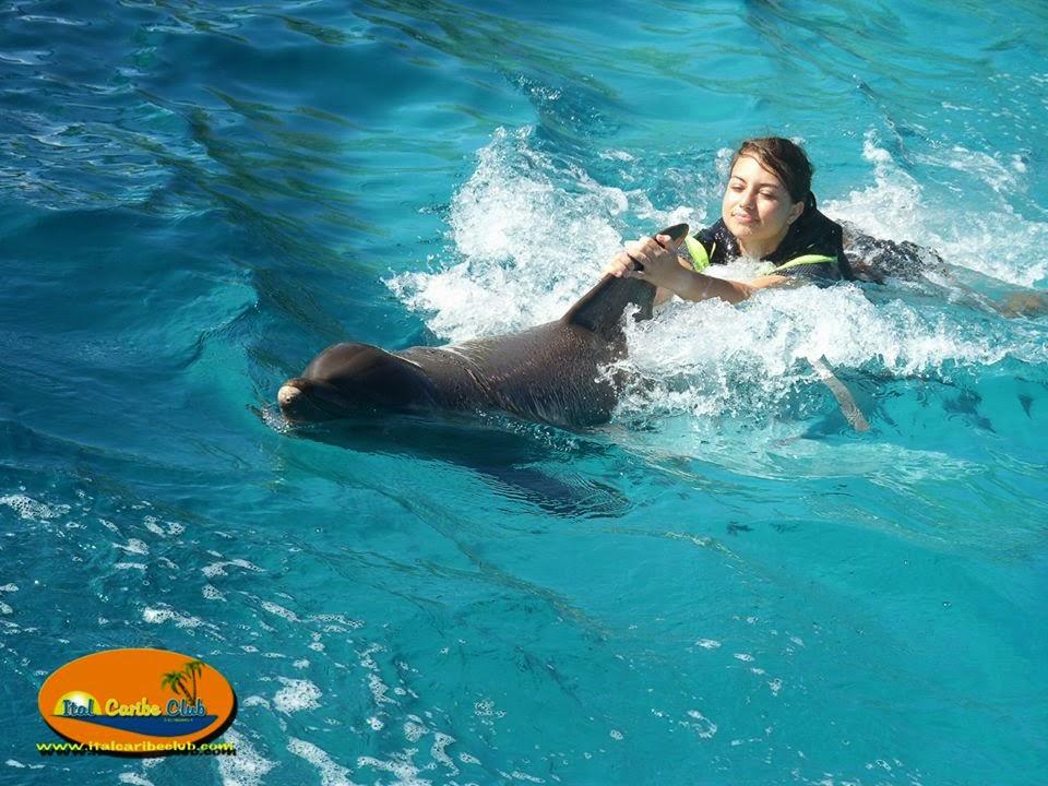Italcaribe offerta vacanza low cost isla margarita maggio 2015 - Bagno coi delfini roma ...