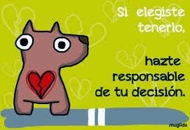 SEAMOS RESPONSABLES :)