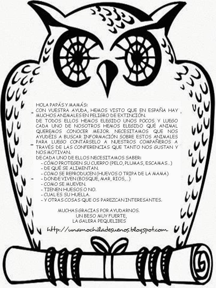 Image Result For Love Owls Coloring