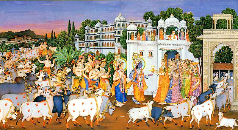 Krishna Gaushala