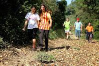Camí de tornada a Sant Feliu de Codines, paral·lel al Torrent de Coll de Poses