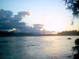 El Rio de palos blancos