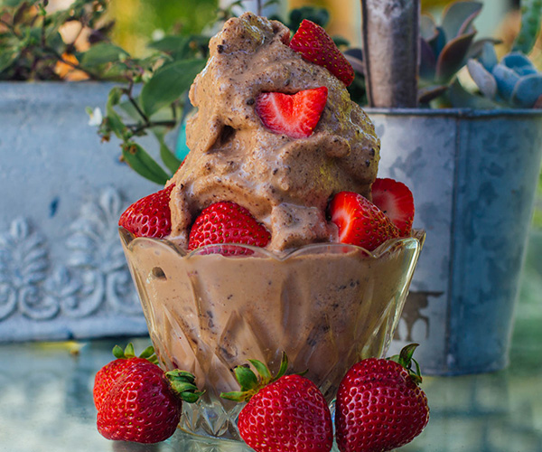 Chocolate and peanut butter ice cream that's good for you? Believe it. This is the ice cream you've been waiting for. It has only 4 ingredients, and takes less than 10 minutes to make, plus freezing time. Quick and easy, gluten free, paleo