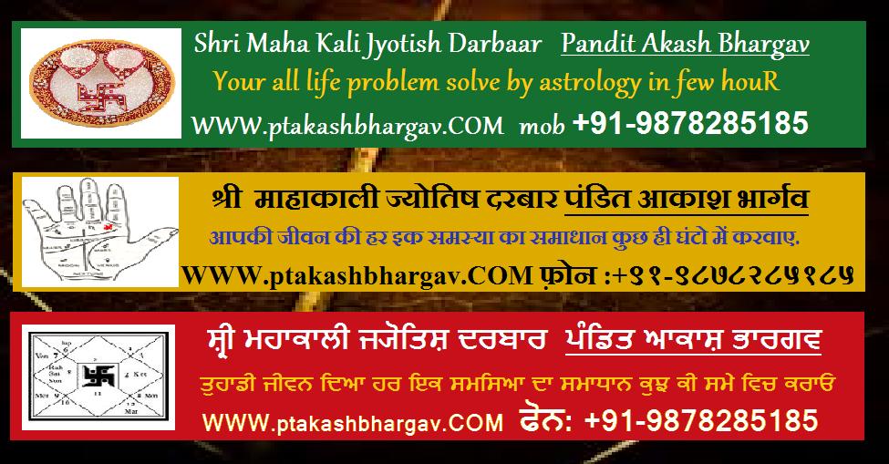 Indian Best Famous Jyotishi Astrologer