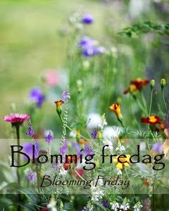 www.blandrosorochbladloss.blogspot.se