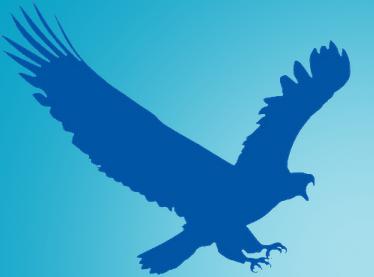EagleGet tăng tốc download - Đối thủ số 1 của IDM