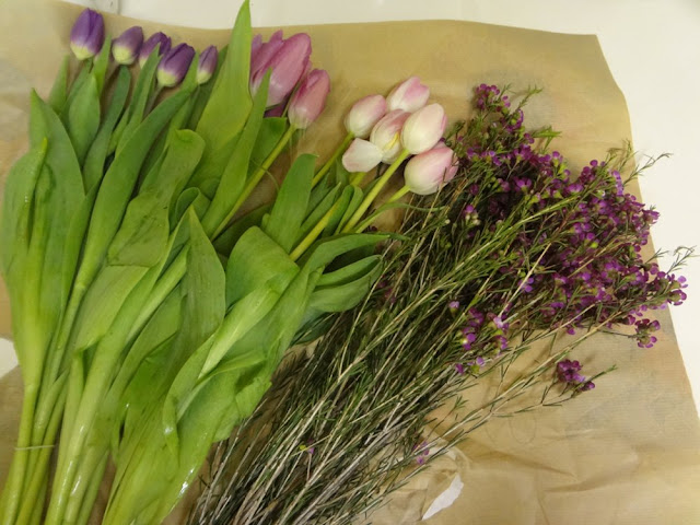 purple and pink tulips for bouquet