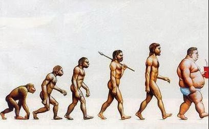 evolution of man