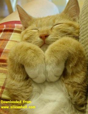 es lindo dormir