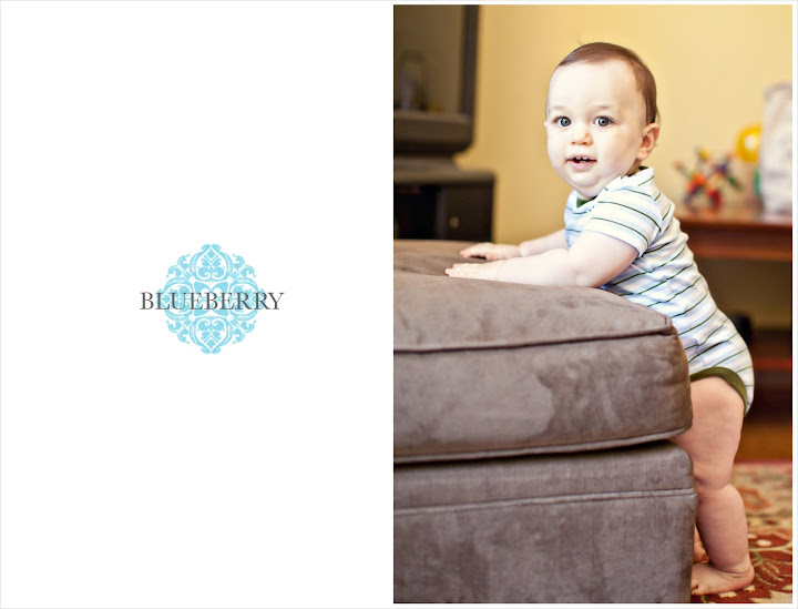 Baby newborn infant family photography session