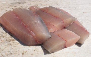 Mackerel fillets; image from http://miamifishhouse.com