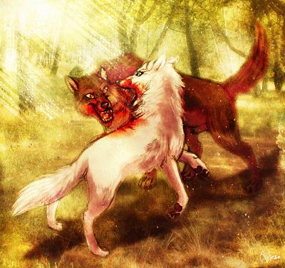 Mơ thấy chó cắn nhau có ý nghĩa gì?