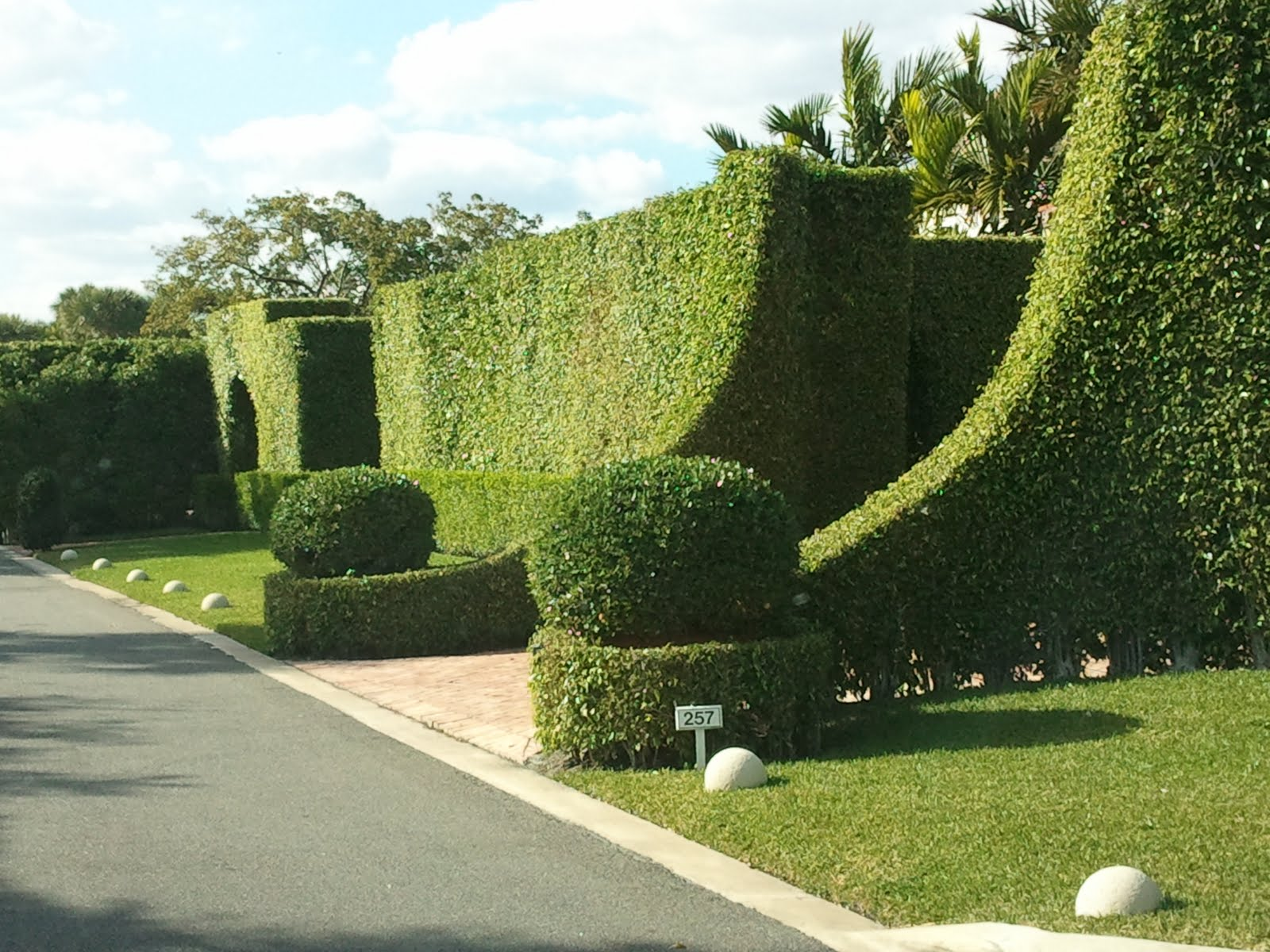 Landscaping Around Hedges : Northern light gates of palm beach