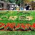 Festa das Flores e Morangos - Parte II