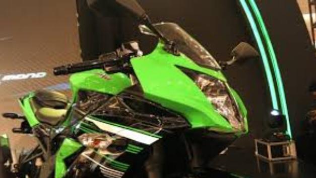 Kawasaki Ninja 250 Mono 2014