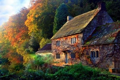 En la profundidad del bosque casas en el bosque - Casitas en el bosque ...
