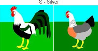 S-silver.jpg