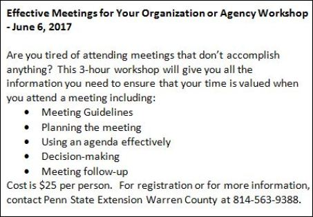 6-6 Effective Meetings Workshop