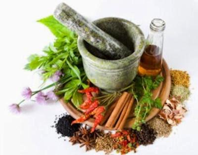 Η ιστορία της γνώσης των ιατρικών φαρμάκων από τα φυτά