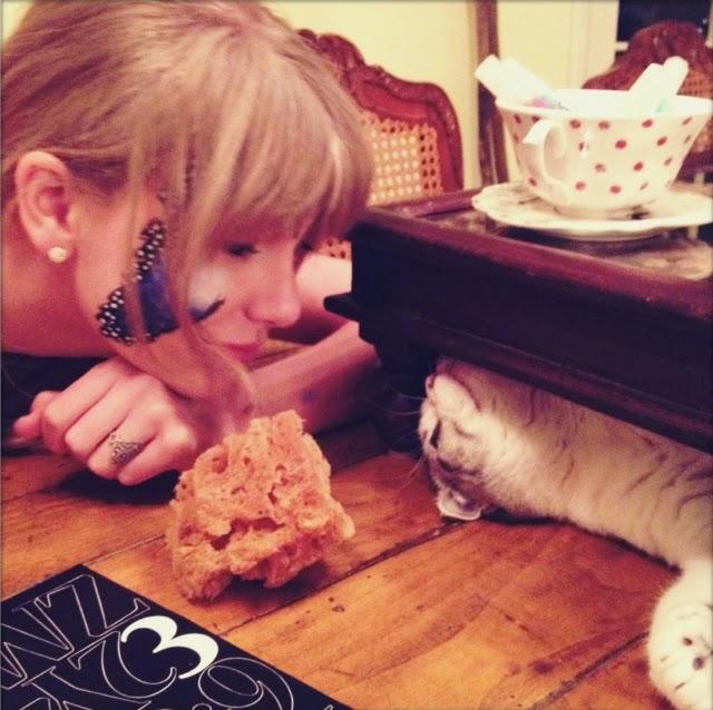 Taylor Swift amante de los felinos