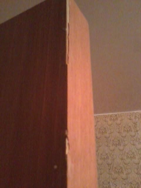 Дверь из искуственного шпона фото
