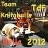 Team Knitabulls Tour de Fleece