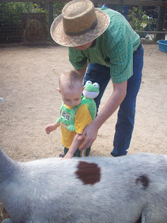 """""""Daddy, save me from the Llamas!"""""""