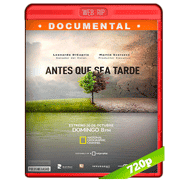 Antes que sea tarde (2016) WEB-DL 720p Audio Ingles 5.1 Subtitulada